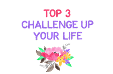TOP 3 Challenge Up Your Life