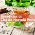 22 grandes benefícios do chá de hortelã pimenta para a pele, o cabelo e a saúde