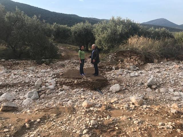 Ανδριανός από τη Δήμαινα: Οι ζημιές ιδίως στους αγροτικούς δρόμους να αποκατασταθούν χωρίς καθυστέρηση