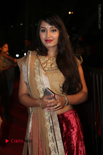 Actress Vennela Stills in Lehenga Choli at Gemini TV Puraskaralu 2016 Event  0037.JPG