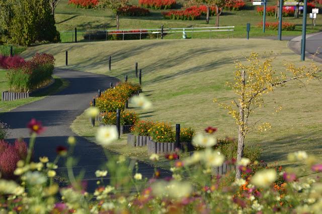 Echigo Hillside Park in Autumn