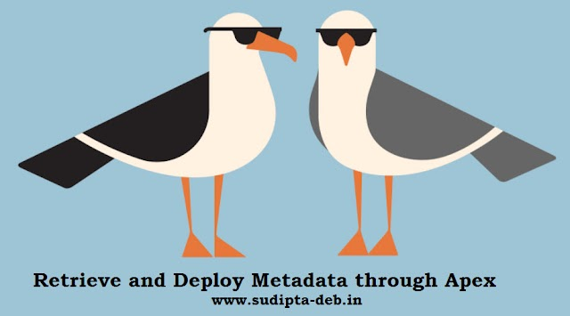 Summer'17 :: Retrieve and Deploy Metadata through Apex