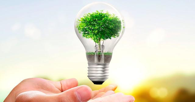 alegoria gráfica, manos con lampara incandescente y un árbol en su interior