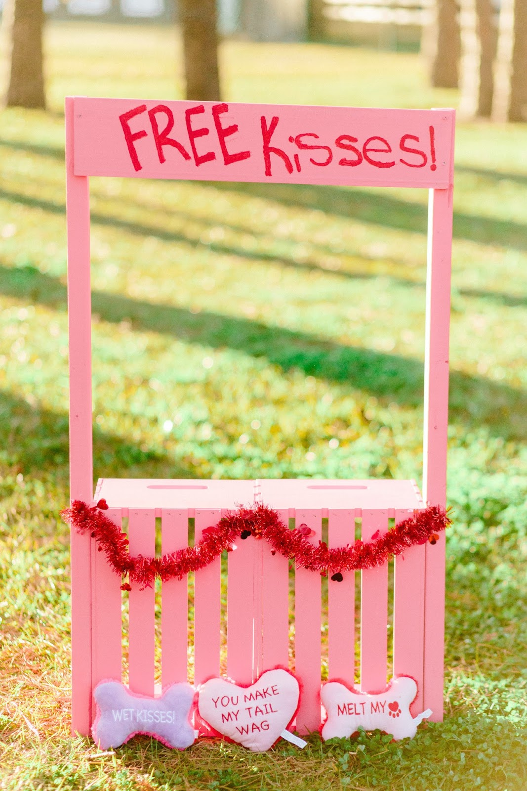 Valentine's day dog kissing booth