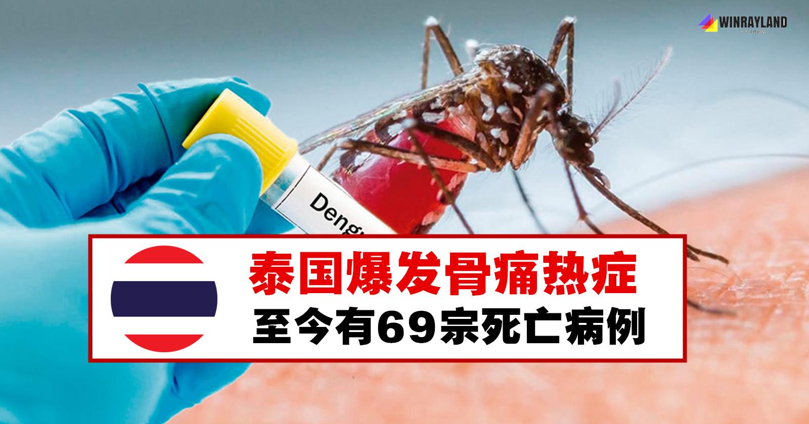 泰国爆发骨痛热症,69宗死亡病例