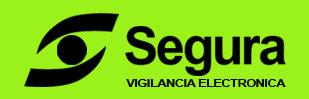Seguridad-Vigilancia