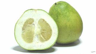 gambar buah jeruk bali