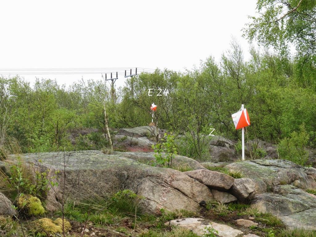Nordic rail matchmaking