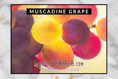 MUSCADINE GRAPE YOUTH