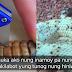 Ito Pala Ang Laman ng Rattlesnake Kaya Nakakagawa siya Ng Ganoong Ingay! Nakakatakot!
