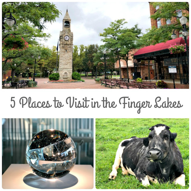 The Finger Lakes region of New York is so much more than just wine country! From quaint downtown areas with wonderful local shops to waterfall chasing to a growing craft brewery scene, here are 5 Places to Visit in the Finger Lakes That Are Not Wineries.