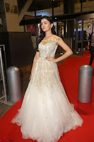 Rukshar Mir designer Anarkali Gown at 64th Jio Filmfare Awards South  2017 ~  Exclusive 111.JPG
