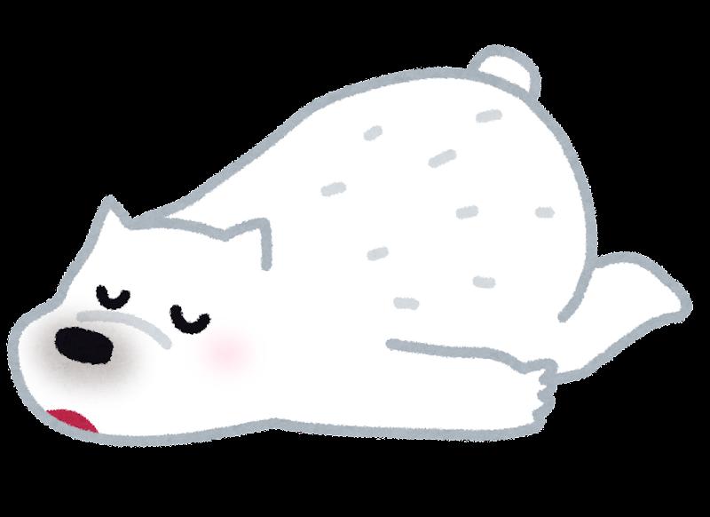 寝ているシロクマのイラスト かわいいフリー素材集 いらすとや