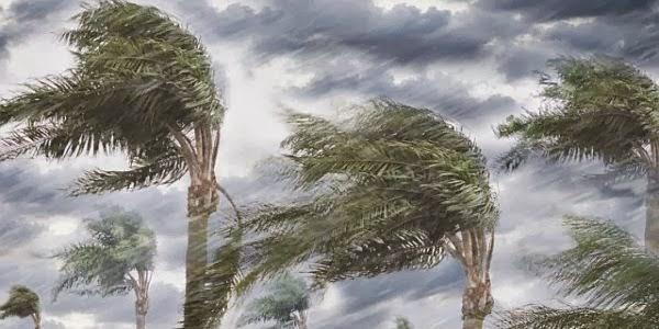 Angin Kecang Hantam Seunuddon dan Tanah Jambo Aye, Puluhan Rumah Rusak