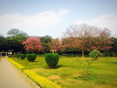 Cubbon_Park_Bangalore