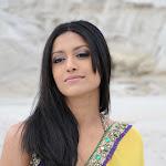 Mamatha Mohandas Hot In Yellow Saree
