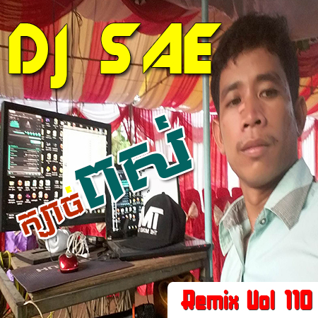 DJ SAE Remix VOL.110   New Song Remix 218