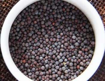 Семена чёрной горчицы - мелкие (меньше чем у жёлтого сорта культивируемого в Европе), круглой формы, красновато-коричневого цвета. Острые