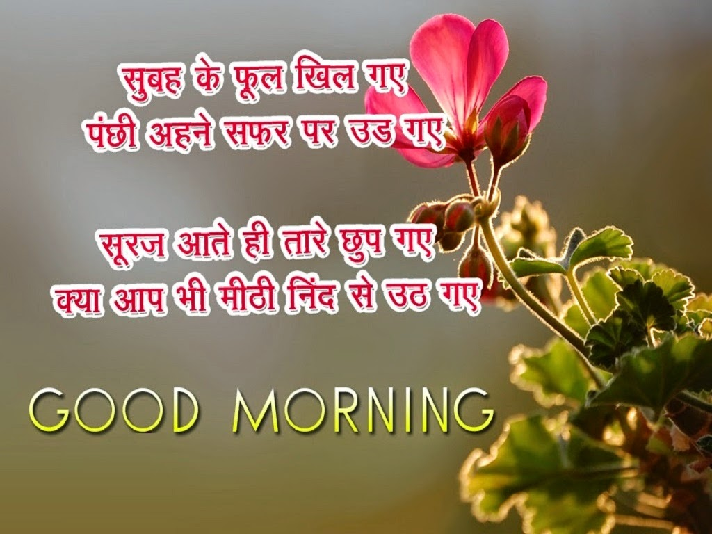 Good Morning Hindi SMS, Text Messages Cards | Festival Chaska