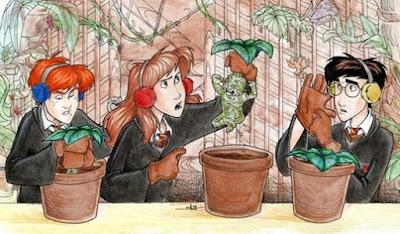 Plantas Fundamentais em Magia
