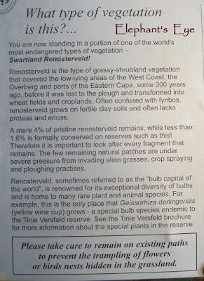 Tinie Versfeld Wildflower Reserve
