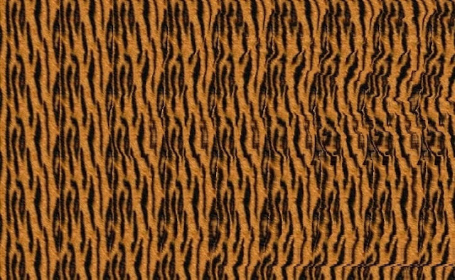 Stereogram Picture of bear which will twist your mind