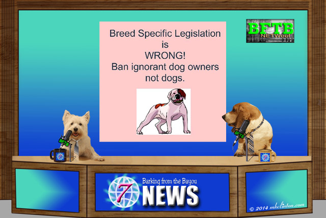 BFTB NETWoof News on Breed Specific Legislation