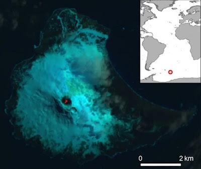 Danau Lava Sangat Langka Ditemukan Di Pulau Terpencil