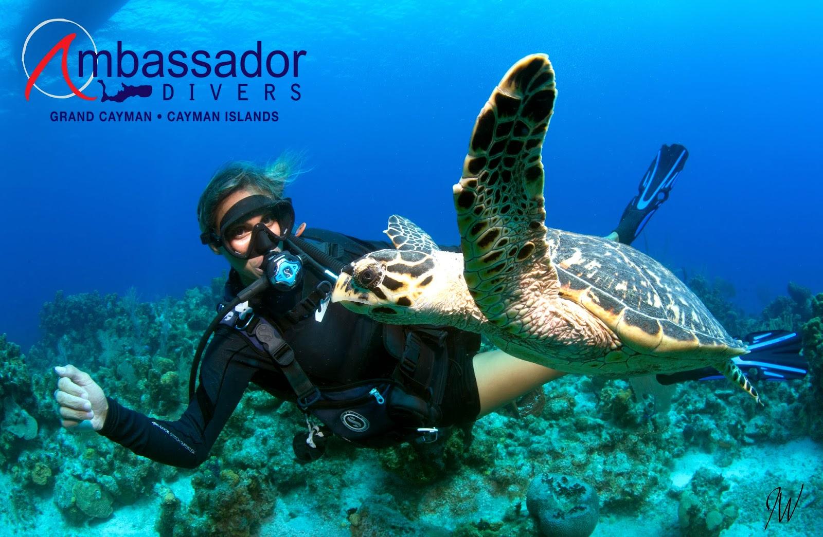 News From Ambassador Divers: Grand Cayman SCUBA Diving