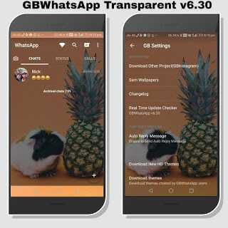 GBWA v6.30 Transparent