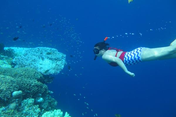 Pelni Jadwal Ulang Destinasi Wisata Bahari 2016