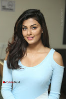 Anisha Ambrose Latest Pos Skirt at Fashion Designer Son of Ladies Tailor Movie Interview .COM 1170.JPG