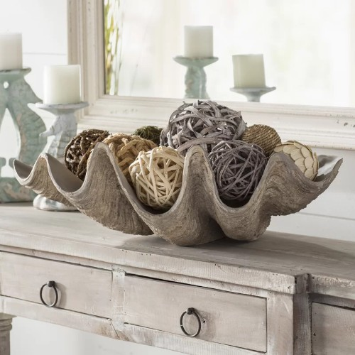 Giant Clam Shell Bowls