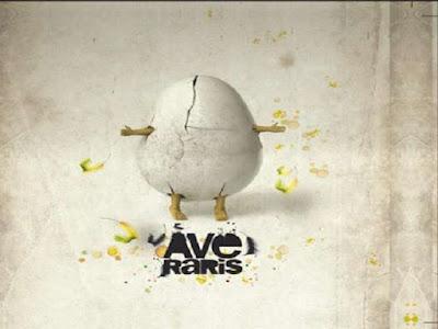 AVE RARIS - Ave Raris (2010)
