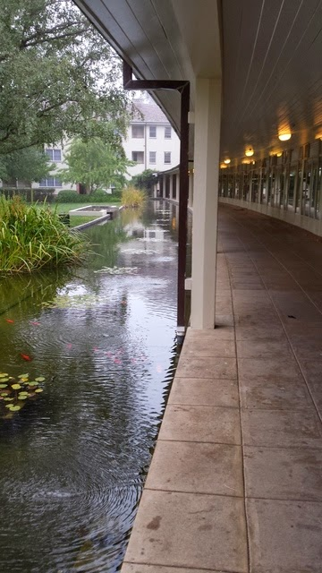 water mall with carp next to walkway