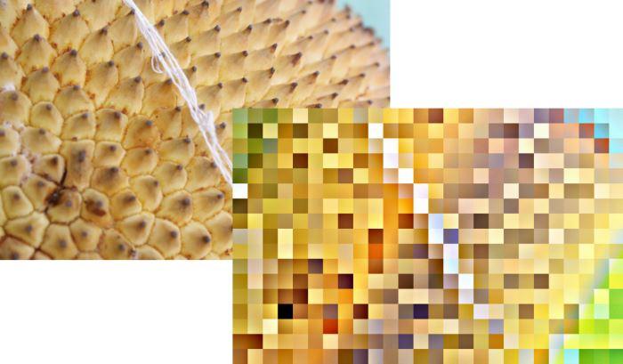 Mengubah foto menjadi gambar abstrak menggunakan GIMP