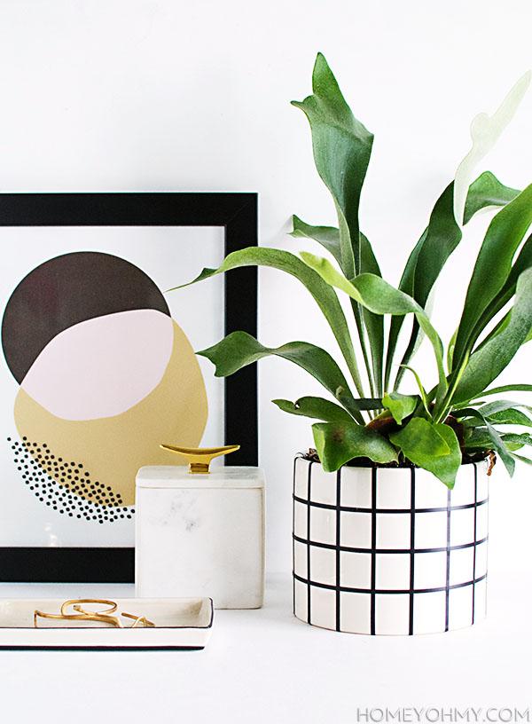 http://www.homeyohmy.com/diy-grid-planter/