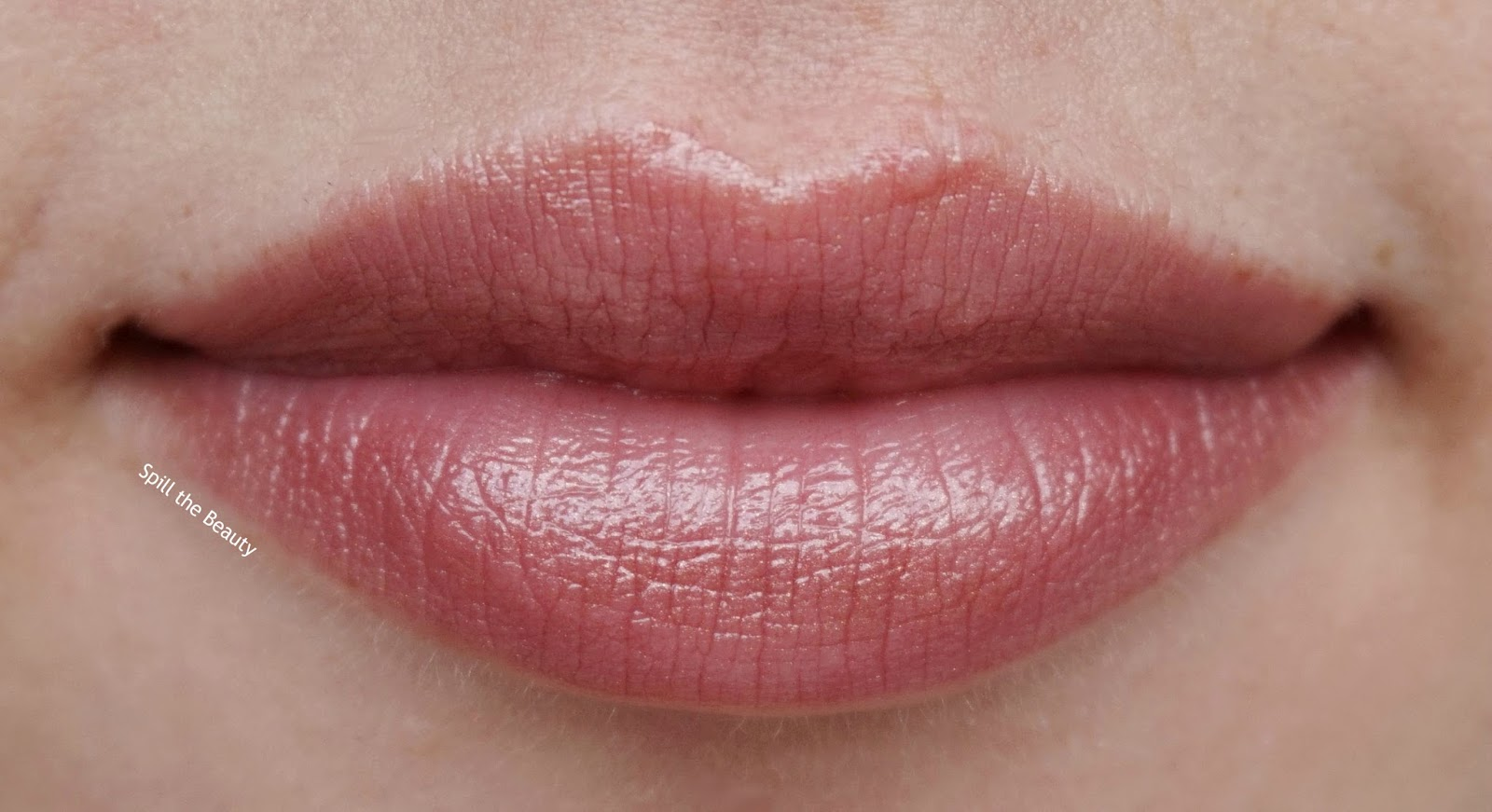 lip swatch - dior lip addict lipstick sophisticated 927