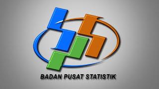 Badan Pusat Statistik Buka Lowongan 800 Ribu Petugas Sensus Tahun Ini
