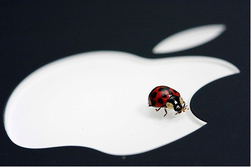 Apple App Store was vulnerable for more than Half year