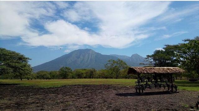Wisata Aam mirip Afrika Baluran Jawa Timur