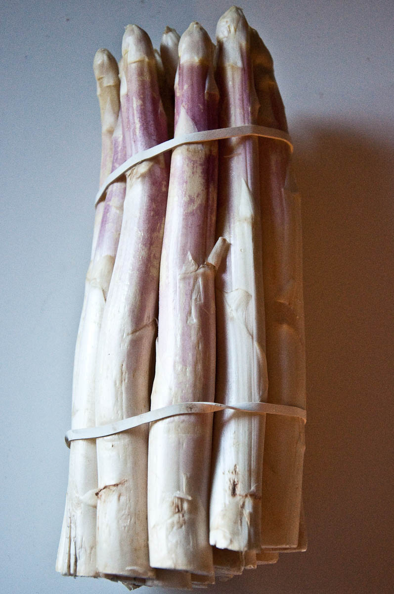 White asparagus spears on my windowsill, Vicenza, Veneto, Italy