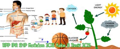 Download RPP IPA SMP Kurikulum 2013 Kelas 8 Revisi 2016