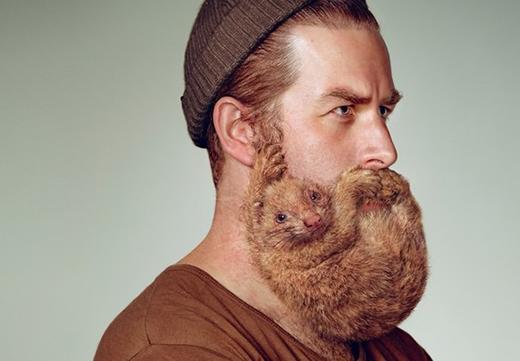 दाढ़ी कैसे बढायें