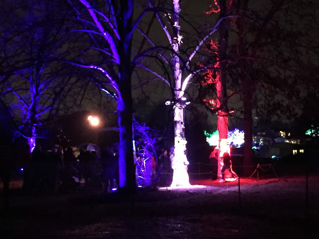Hugging an illuminated tree at Illumination at Morton Arboretum.