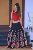 Telugu Actress Nishi Ganda Stills in Red Blouse and Black Skirt at Tik Tak Telugu Movie Audio Launch .COM 0292.JPG