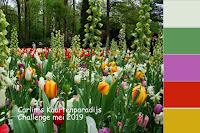 https://carlinskaartenparadijs.blogspot.com/2019/05/challenge-10-mei.html