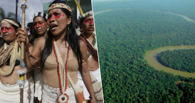 Amazon Tribe Wins Lawsuit Against Oil Company, Saving Huge Amount Of Rainforest