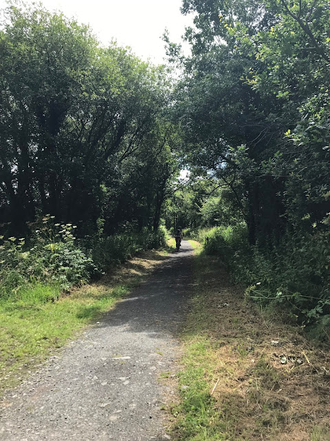 Cycling the Tarka Trail, somewhere south of Bideford