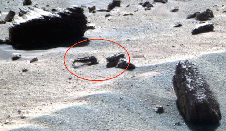 mars rover finds animal - photo #15